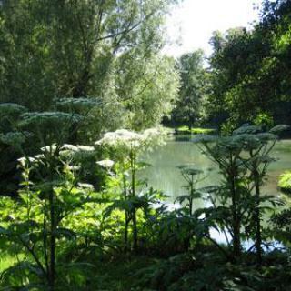 Les Jardins de la Lys