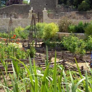 Jardin médiéval Saint Jean des Anneaux