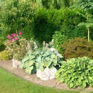Le jardin Bosselé