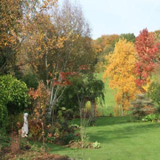 O Jardin Paisible