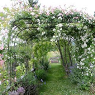 Le Nouveau Jardin de Bernard