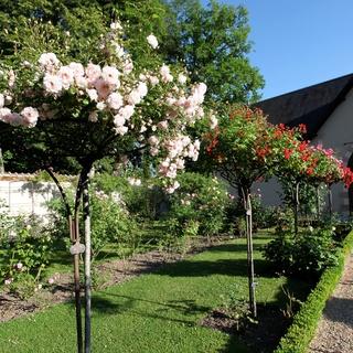 Arboretum de la Grande Lienne