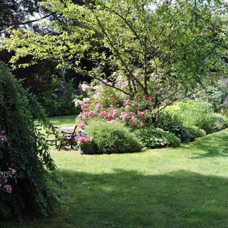 """Jardin """"Le Quenti"""""""