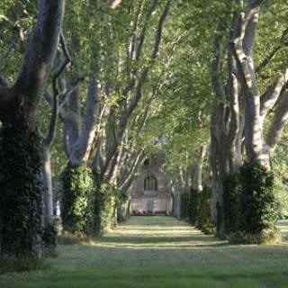 Parc du Château de Montlaur