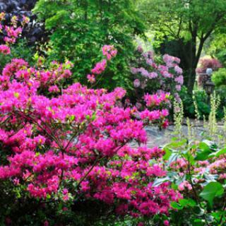 Jardin du Ridrel