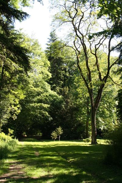 Parc du Bois Cornillé