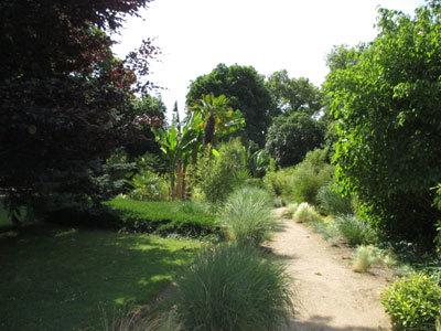 JARDIN DES PLANTES D'ORLÉANS