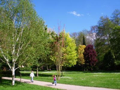 PARC DU MOULIN À TAN