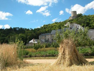 Potager-Fruitier du Château de La Roche-Guyon