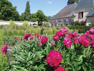 Parc du Château de Cheverny