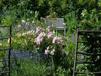 Le Jardin des Plantes de Chez Nous