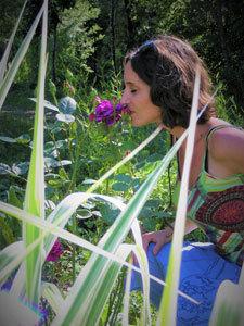 Les Jardins de Lornay