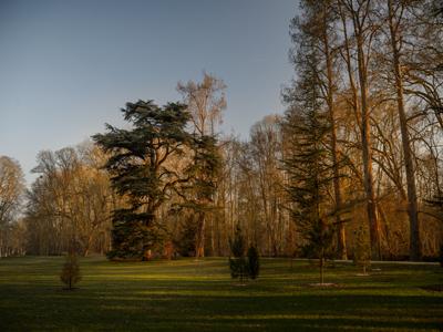 Parc du château d'Azay-le-Rideau