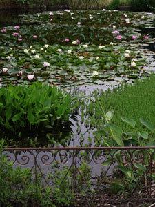 Le Jardin des Rigonneries