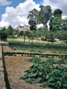 Parc du CHATEAU D'ARCELOT