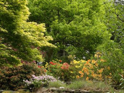 Les Jardins de Treuscoat