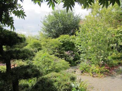 Jardin d'Esprit Japonais