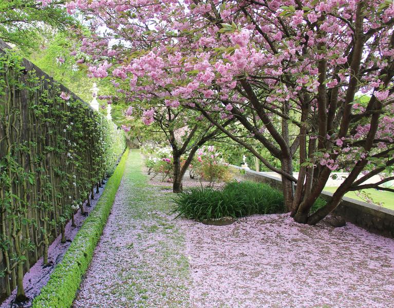 Parc et Jardin du château de Soquence