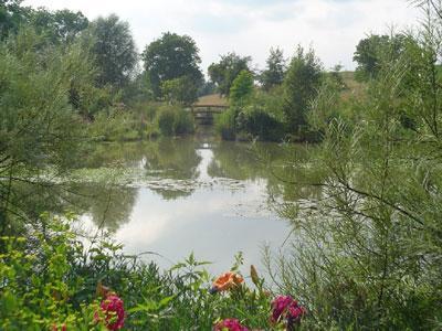 Jardin d'eau de l'Aubépré