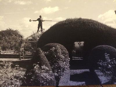 Le Jardin des Ifs