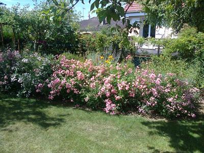 Jardin de Joselain