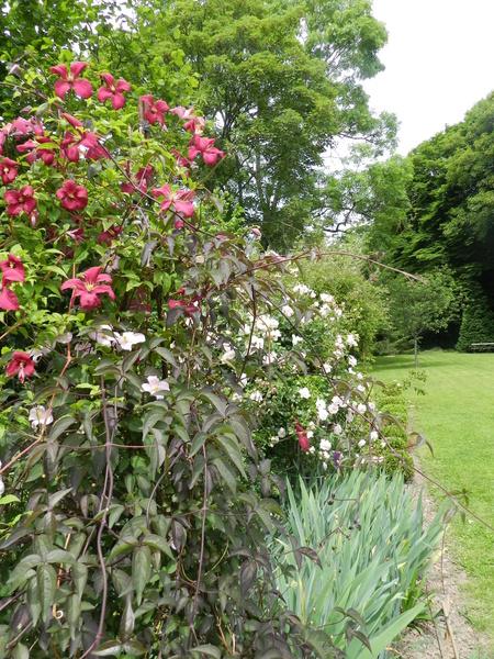 Jardin 'Les Charmes'