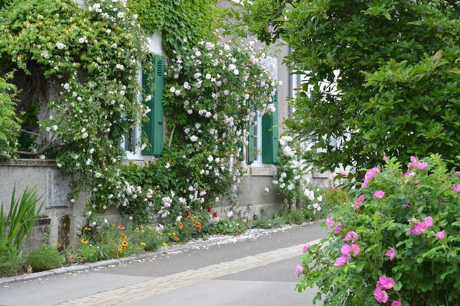 Chédigny village jardin