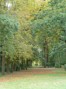 Parc du Château de la Droitière
