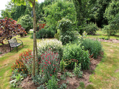 Le jardin botanique d'Alkinoos