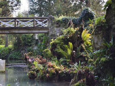 Le Jardin du Château Bellenau