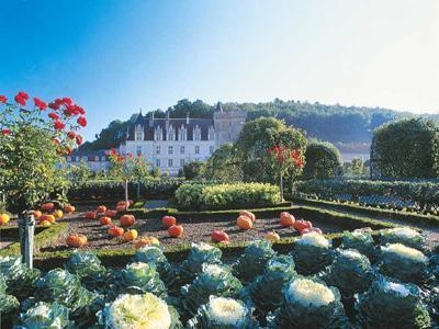 Château et Jardins de Villandry
