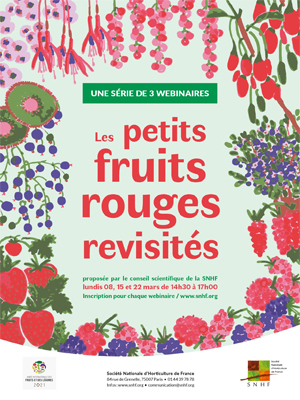 Les petits fruits rouges revisités - 3 webinaires