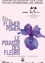 Flower Power- Le Pouvoir des Fleurs
