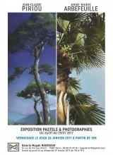 Arbres - Pastels et Photographies