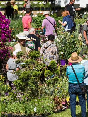 28e édition des Journées des Plantes d'Albertas
