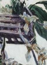Caillebotte, peintre et jardinier