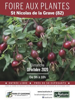 53ème Foire aux plantes rares et de collection