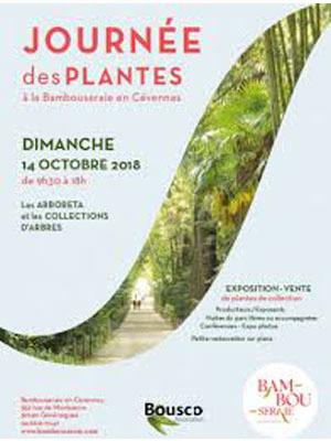 Journée des Plantes La Bambouseraie