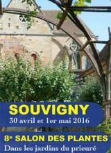 Salon des Plantes de Souvigny