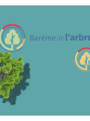 35e ArboRencontre - Le nouveau barème de l'arbre