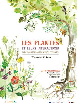 Les plantes et leurs interactions